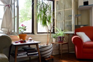 Indoor Air Quality : How to Make Your Home Healthier