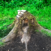 A Tree Stump Cottage