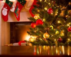 Preparing Your House for an Eco-Friendly Holiday