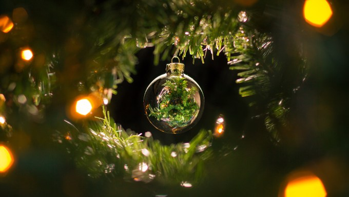 Merry Christmas from the staff at Biofriendly Planet!