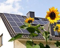 Go Green at Home: 7 Eco-Friendly DIY Projects