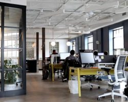 Tips for Creating an Eco-Friendly Business Facility