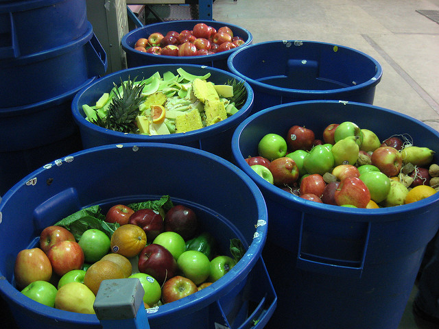 fruit in bins