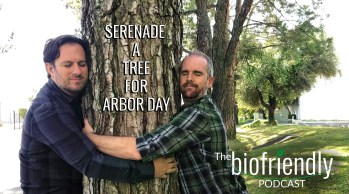 Serenade A Tree For Arbor Day