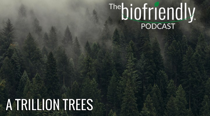 The Biofriendly Podcast - Episode 34 - A Trillion Trees