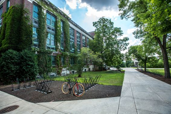 6 Ways Students Can Be More Environmentally-Friendly on Campus