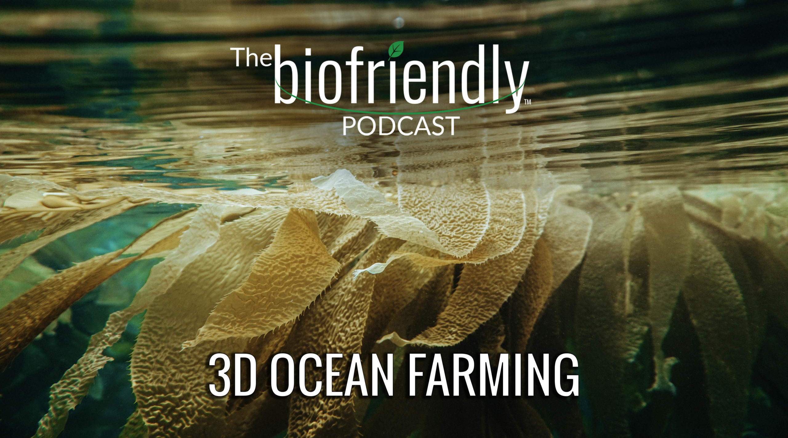 The Biofriendly Podcast - Episode 68 - 3D Ocean Farming