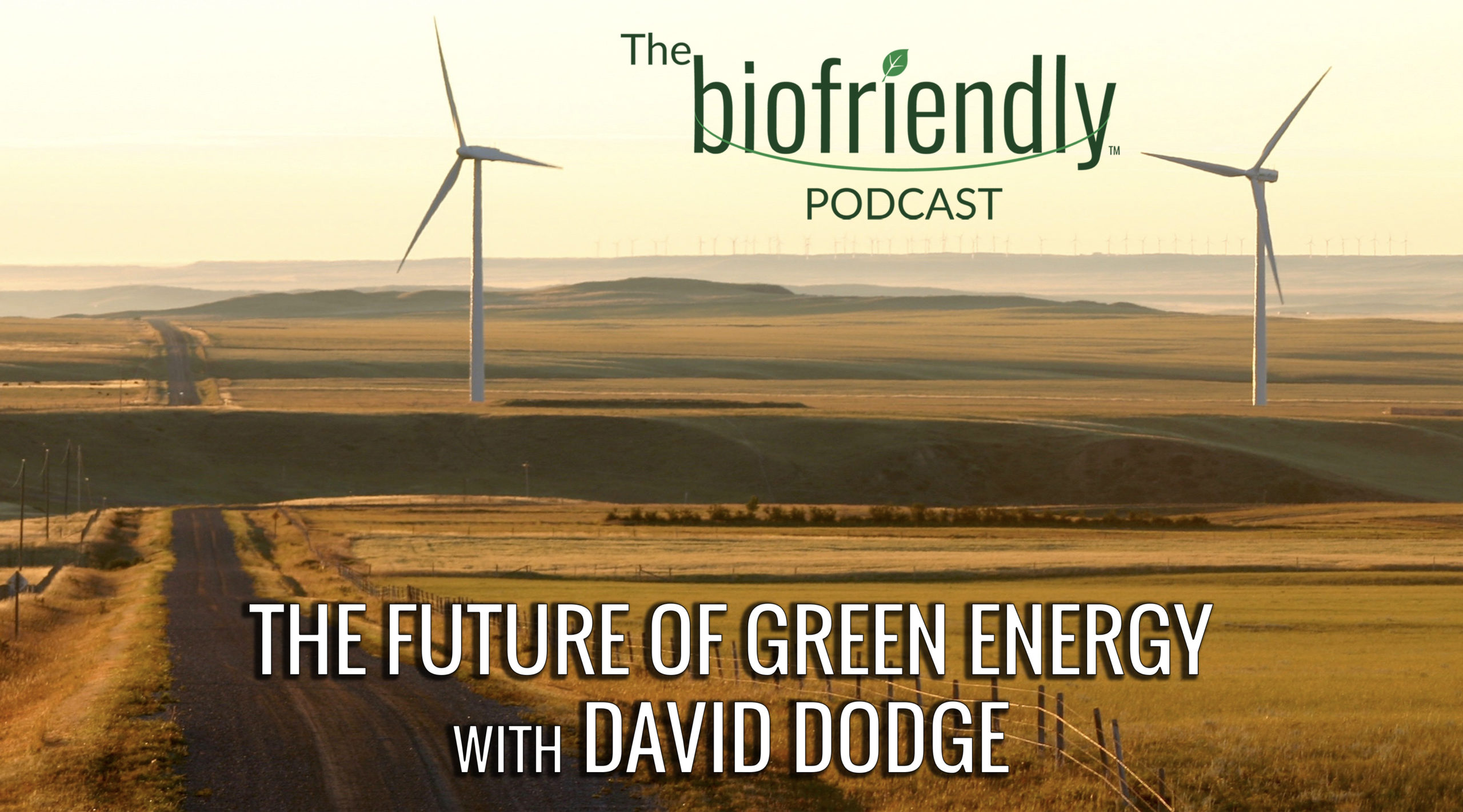 The Biofriendly Podcast - Episode 69 - The Future of Green Energy with David Dodge