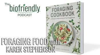 Foraging Food with Karen Stephenson