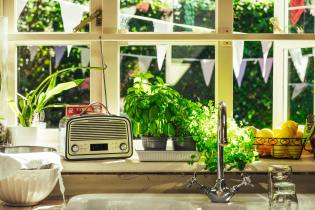 Biofriendly Way to Grow Food Indoors