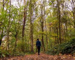 10 Eco-Friendly Actions to Help Improve Your Overall Well-Being