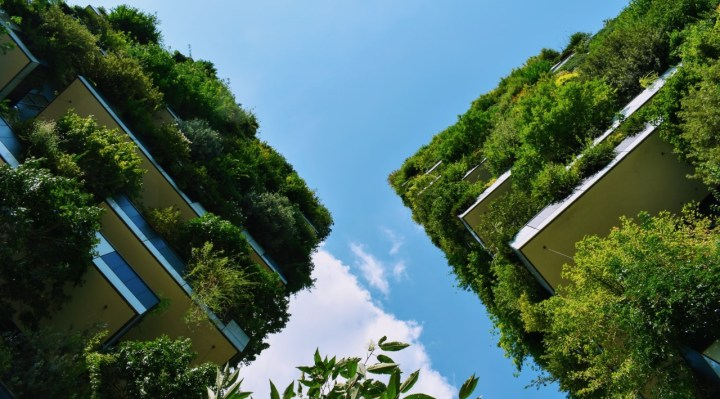 Eco-Conscious World image with buildings and lots of greenery
