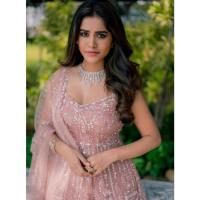 Nabha Natesh Age, Biography, Height, Family, Boyfriend, Movies & More