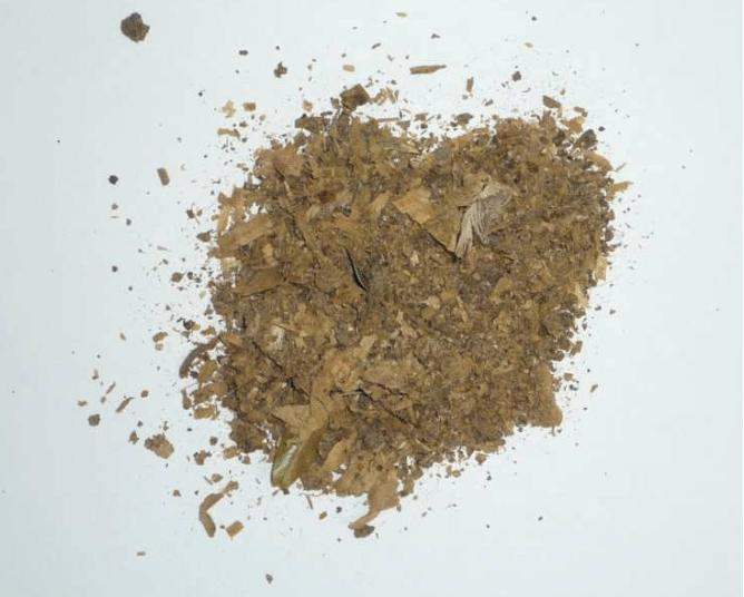 鶏糞 投入前 熱分解装置 Biogreen 2018.3.1