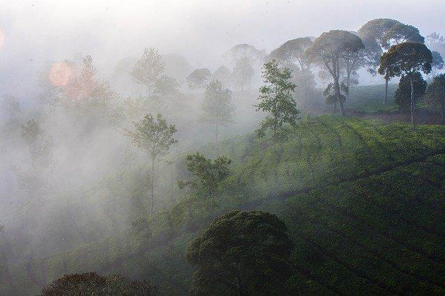 Tempat Wisata di Bandung yang Baru dan Kece untuk Foto