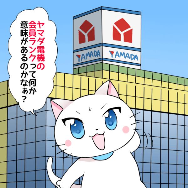 背景にヤマダ電機があり 白猫が「ヤマダ電機の会員ランクって何か意味があるのかなぁ?」 と考えているシーン
