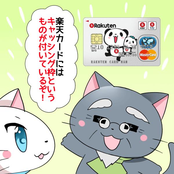 楽天カードが背景にあり、 博士が「楽天カードにはキャッシング枠というものが付いているぞ!」 と白猫に話しているシーン