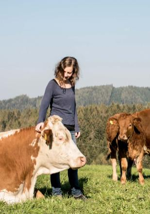 Unsere Rinder – Biohof Brandner