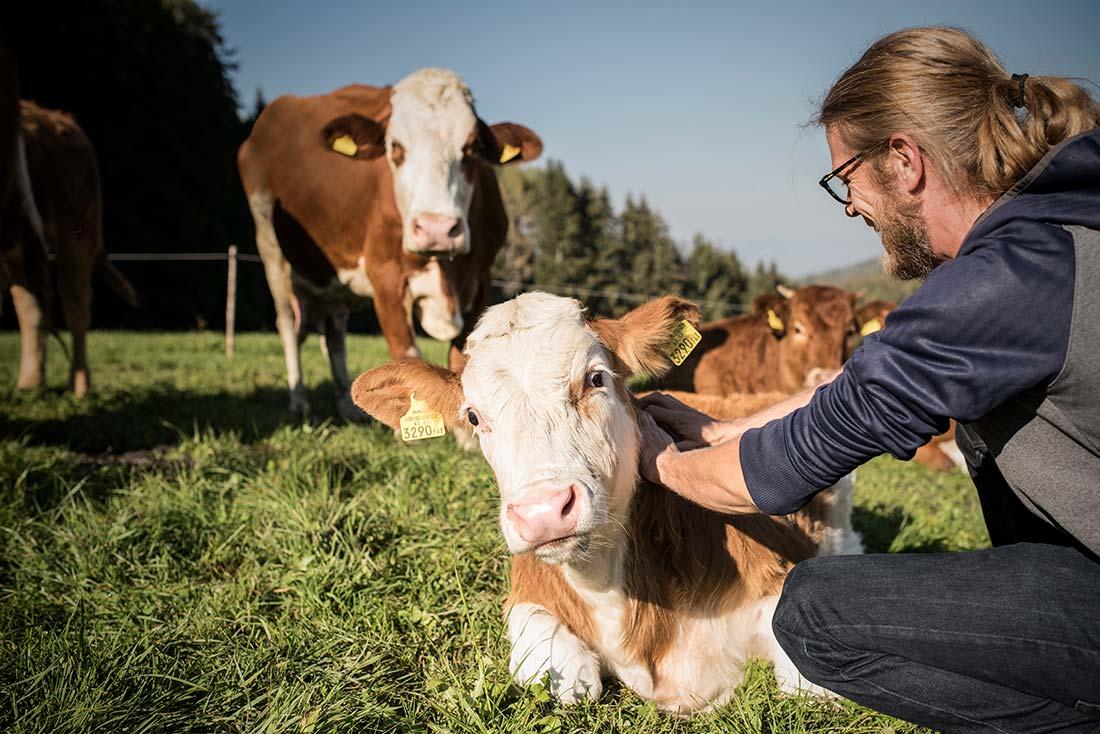 Bio und viel mehr Tierwohl