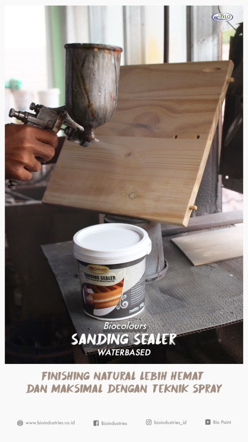 BioColours Sanding Sealer Water Based
