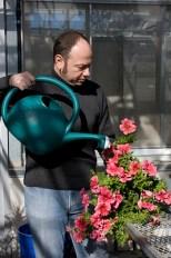 fleur bioinformatique ADN jardinier