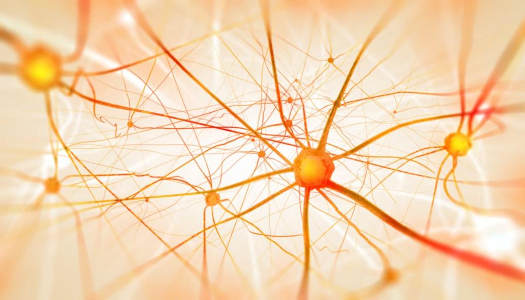 NurOwn® – BrainStorm Signs Dana-Farber as Second Manufacturing Site in U.S.