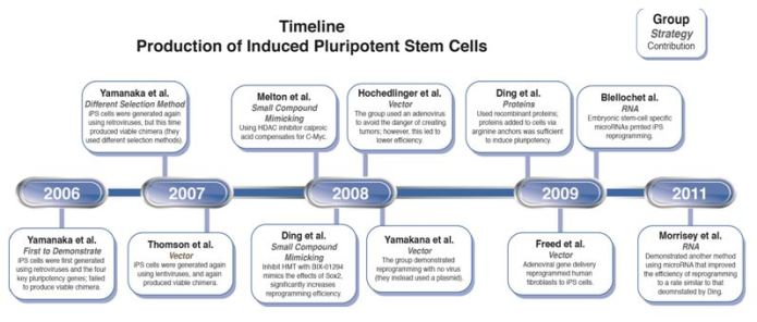 Timeline of Key iPSC Events
