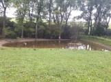 small water dam