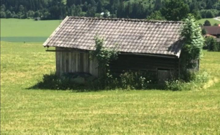 Stadel in der Wiese oder am Acker als kleiner Lebensraum © Markus Danner)