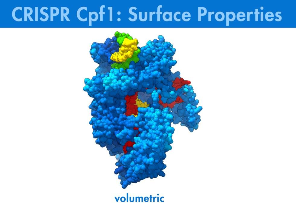 CRISPR, Cpf1, Genomics, Biologic Models, Biologic Animation,