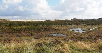 formation écosystèmes naturels