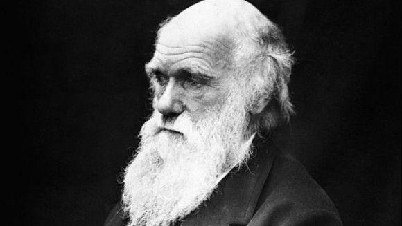 Reakcija biologa na peticiju o reviziji ucenja teorije evolucije