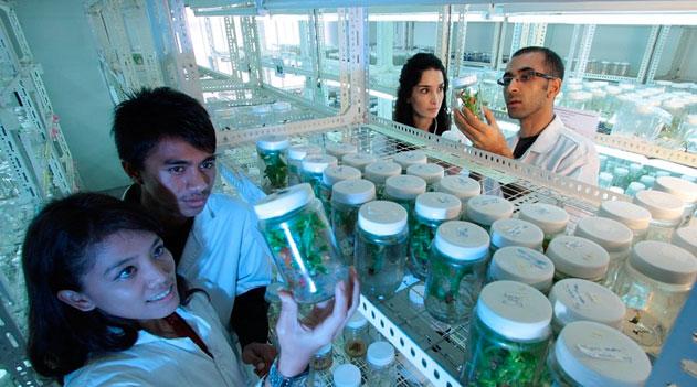 Laboratório biológico