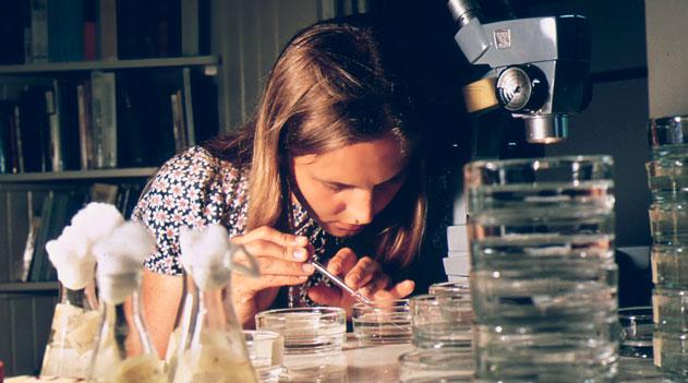 Estudante de biologia - Atuação do biólogo