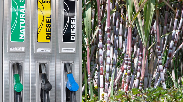 Biocombustíveis - Biodiesel