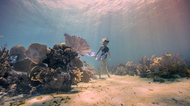 Fotografia e preservação da vida marinha
