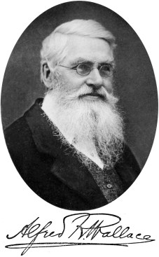 Alfred Russel Wallace Crédito: https://pt.wikipedia.org/wiki/Alfred_Russel_Wallace
