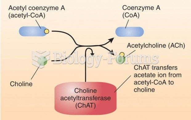 Image result for acetylcholine biosynthesis