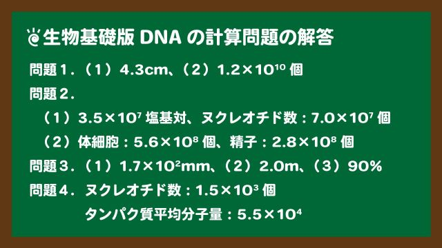 スライド2:生物基礎版DNAの計算問題の解答