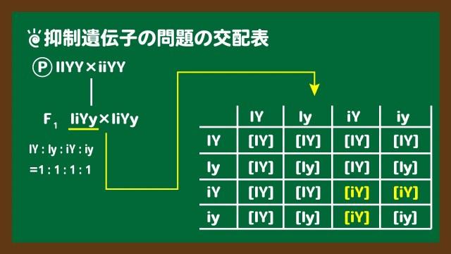 スライド3:抑制遺伝子の問題の交配表