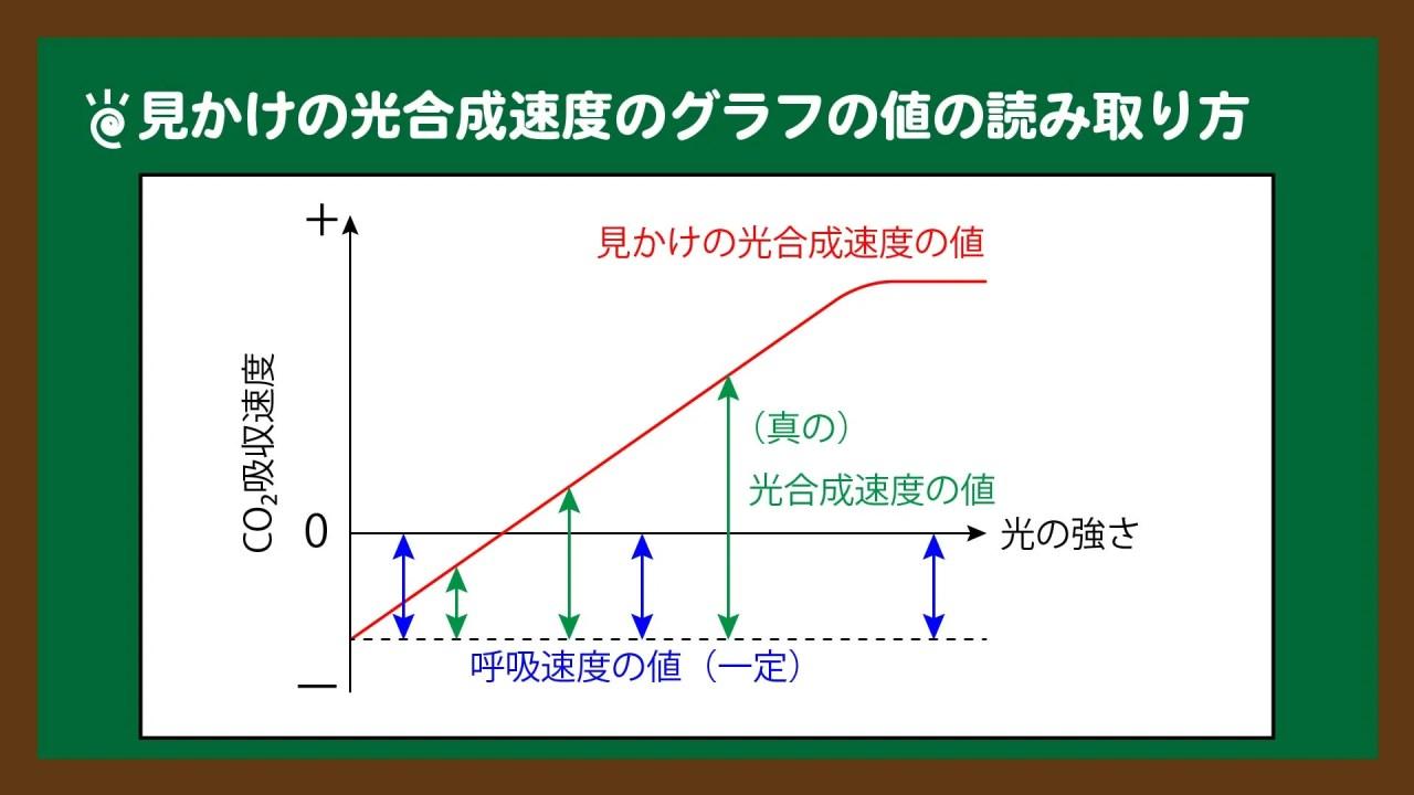 スライド3:見かけの光合成速度のグラフの値の読み取り方