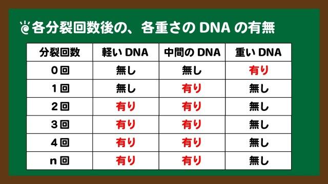 スライド7:各分裂回数後の、各重さのDNAの有無