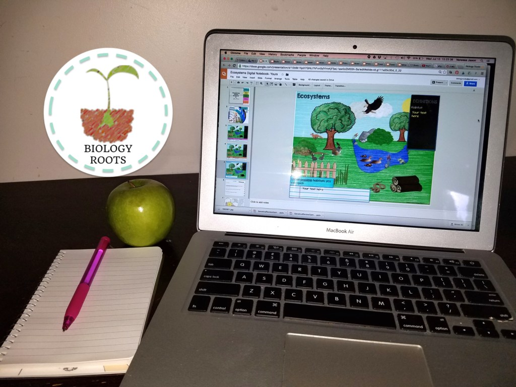 Using Digital Resources in the Classroom