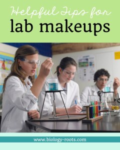Lab makeups science lab make ups tips for lab makeups school