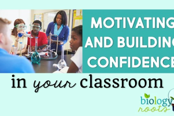 Classroom Success: 5 Tips for Motivating Plus 7 Tips for Building Confidence