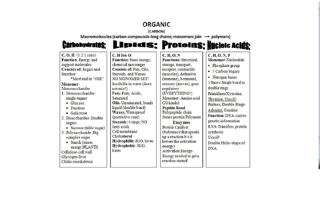 Compare The Chemical Structure And Functions Of