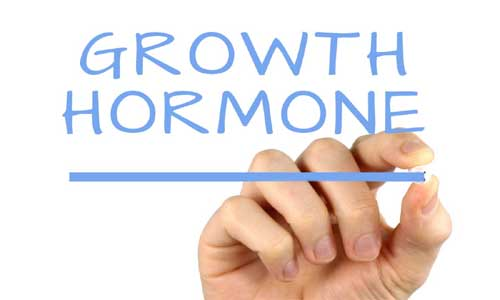 image of Growth hormone