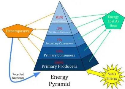 image of Energy Pyramid