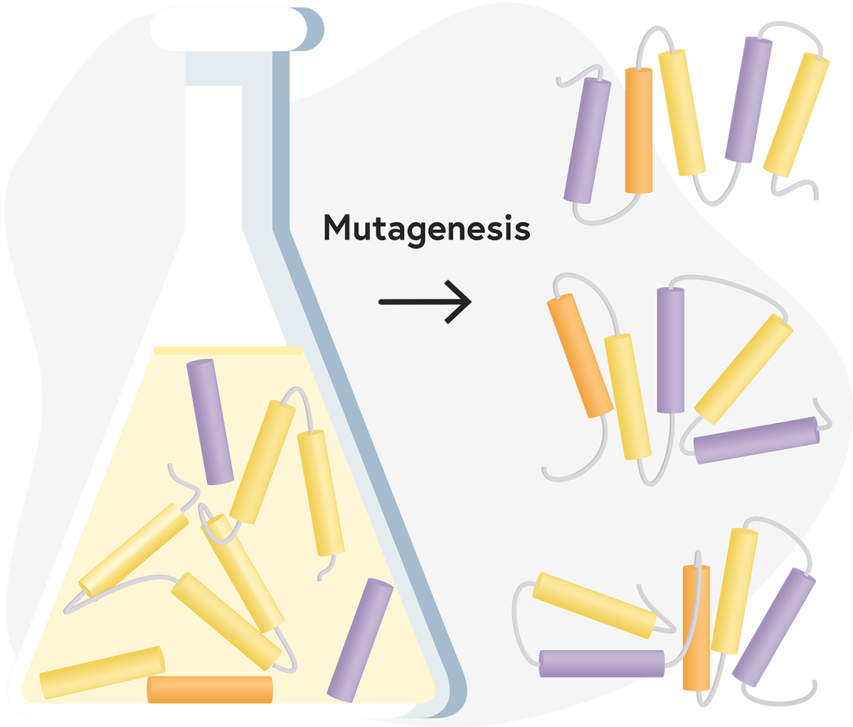 This illustration visually represents mutagenesis.