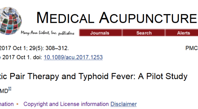 Biomagnetic Pair Therapy and Typhoid Fever: A Pilot Study
